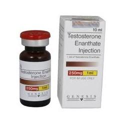 Testosteron Enanthate 250mg