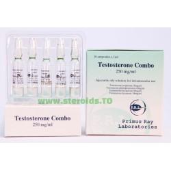 Combo Testostérone [Sustanon] Ray Labs 10X1ML [250 mg / ml]