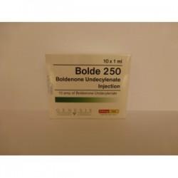 Bolde 250 Genesis