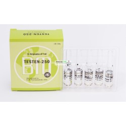 Testen 250 BM (Testosterone Enanthate Injection) 12ML [6X2ML Vial]