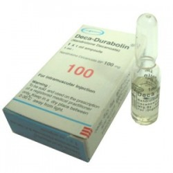 Deka Durabolin Organon 1ml amp [100mg / 1ml]
