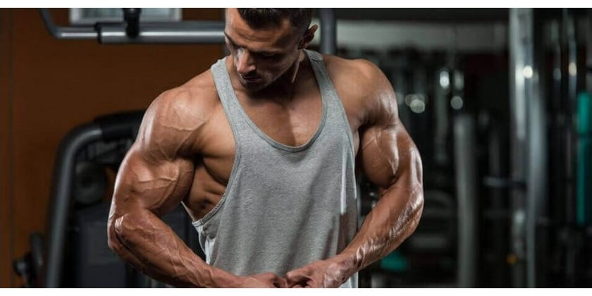 Steroids for Beginner Bodybuilders: Everything You Should Know!