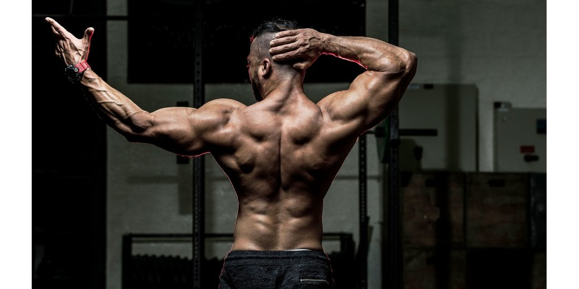 Buy Steroids Online at A Cheap Rate And Get A Well-built Physique