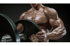 Buy Quality Steroids And Get a Robust Physique