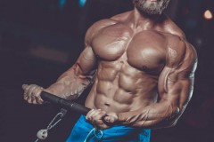 Get An Attractive Physique by Using Oral Steroids
